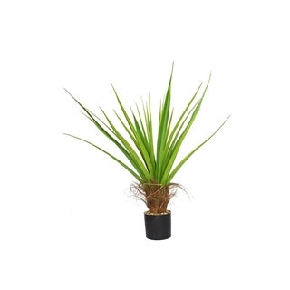 Laura Ashley 44-inch Agave Plant with Cocoa Skin