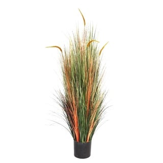 Laura Ashley 5-foot Onion Grass with Cattails