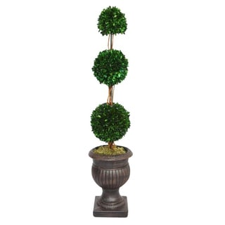 Laura Ashley 44-inch Triple Ball Natural Preserved Boxwood Arrangement with Planter