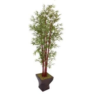 Laura Ashley 102'' Tall Harvest Bamboo Tree in 17'' Fiberstone Planter
