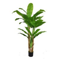 Laura Ashley 72-inch Banana Tree with Real Touch Leaves