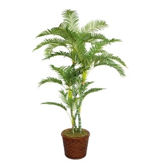 "Laura Ashley 77"" Tall Palm Tree in 17"" Fiberstone Planter"