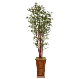 Laura Ashley 111'' Tall Harvest Bamboo Tree in 16'' Fiberstone Planter