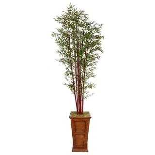 Laura Ashley 111'' Tall Harvest Bamboo Tree in 16'' Fiberstone Planter