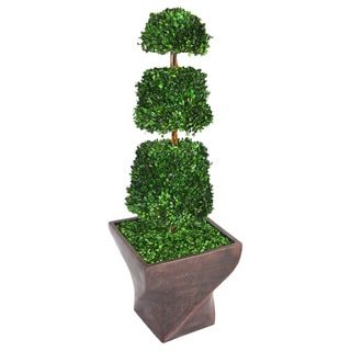Laura Ashley 54-inch Tall Preserved Natural Spiral Boxwood Cone Topiary in Fiberstone Planter