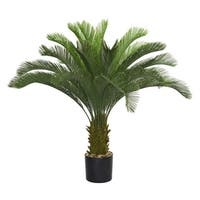 Laura Ashley 48-inch Cycas Palm Tree