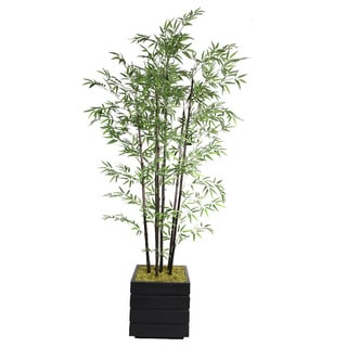 Laura Ashley 78-inch Tall Black Bamboo Tree in Fiberstone Planter