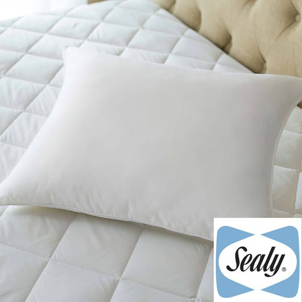 Sealy Posturepedic Posture Fit Stomach Sleeper Pillow Free