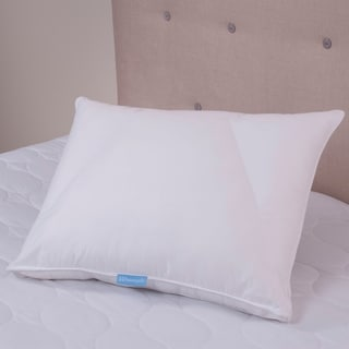 Sealy Posturepedic Posture Fit Back Sleeper Pillow
