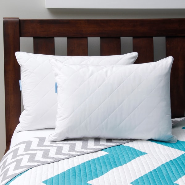 sealy feather and down pillow set of 2