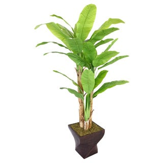 Laura Ashley 82-inch Tall Banana Tree in Fiberstone Planter