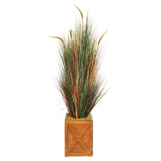 Laura Ashley 69-inch Onion Grass with Cattails in 13-inch Fiberstone Planter
