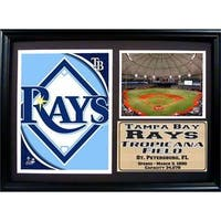 Tampa Bay Rays Stadium 12 x 18-inch Deluxe Frame