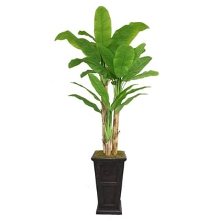 Laura Ashley 91-inch Tall Banana Tree and Real Touch Leaves in 16-inch Fiberstone Planter