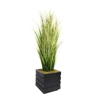 Laura Ashley 66-inch Tall Onion Grass and Twigs in 14-inch Fiberstone Planter