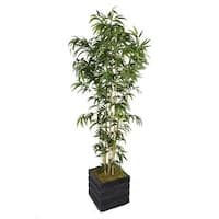 Laura Ashley 78-inch Tall Natural Bamboo Tree and 14-inch Fiberstone Planter