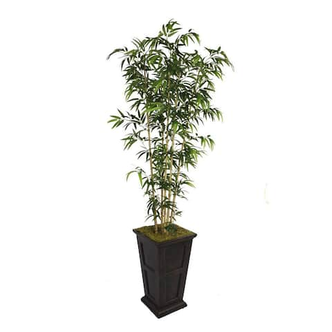 91-inch Natural Bamboo Tree in 16-inch Fiberstone Planter