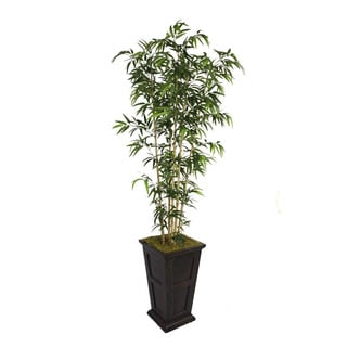 Laura Ashley 91-inch Natural Bamboo Tree in 16-inch Fiberstone Planter