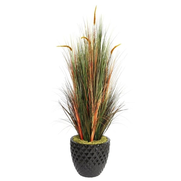 """Laura Ashley 66"""" Tall Onion Grass with Cattails in 16"""" Fiberstone Planter"""