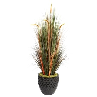 "Laura Ashley 66"" Tall Onion Grass with Cattails in 16"" Fiberstone Planter"