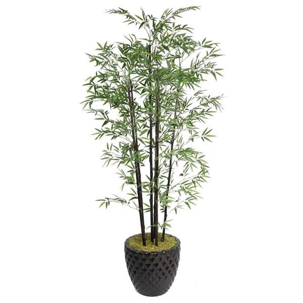 Laura Ashley 78'' Tall Black Bamboo Tree in 16'' Fiberstone Planter