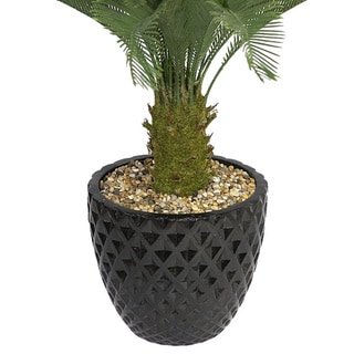 Laura Ashley 54-inch Tall Cycas Palm Tree in 16-inch Fiberstone Planter