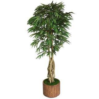 "Laura Ashley 83"" Tall Willow Ficus with Multiple Trunks in 16"" Fiberstone Planter"