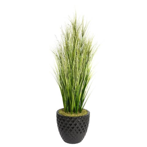 """Vintage Home 66-inch Tall Onion Grass with Twigs in 16-inch Planter - 65.5"""""""