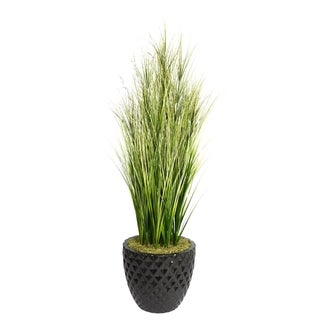 Laura Ashley 66-inch Tall Onion Grass with Twigs in 16-inch Fiberstone Planter