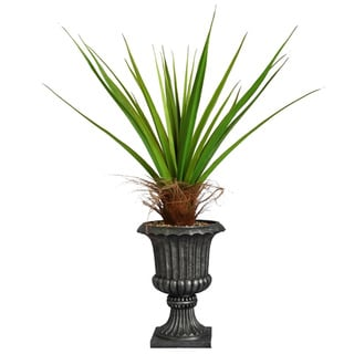 Laura Ashley 58-inch Tall Agave Plant with Cocoa Skin in 16-inch Fiberstone Planter