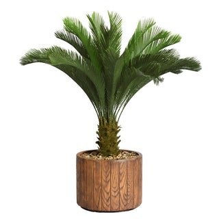 Laura Ashley 53-inch Tall Cycas Palm Tree in 16-inch Fiberstone Planter