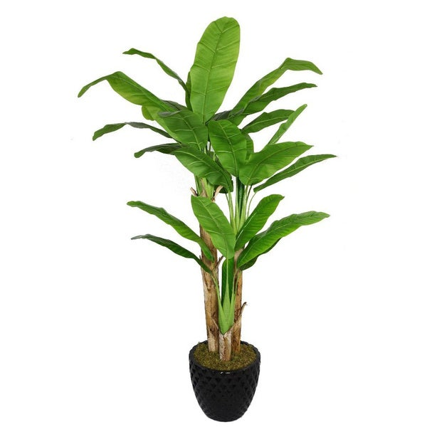 Laura Ashley 78-inch Tall Banana Tree with Real Touch Leaves in 16-inch Fiberstone Planter