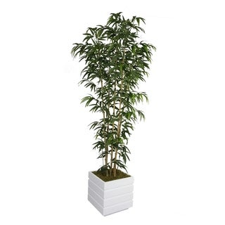 Laura Ashley 78-inch Tall Natural Bamboo Tree in 14-inch Fiberstone Planter