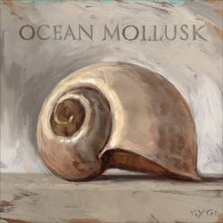 'Amberton Publishing Ocean Mollusk Shell' Canvas Art