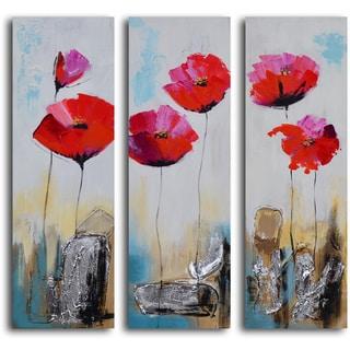 'Poppy rocks' 3-piece Hand Painted Canvas Art