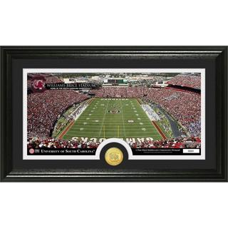 University of South Carolina 'Stadium' Bronze Coin Panoramic Photo Mint
