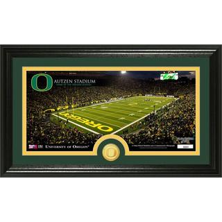 University of Oregon 'Stadium' Bronze Coin Panoramic Photo Mint