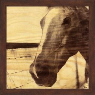 Casey Mckee 'Portrait of a Horse' Framed Art