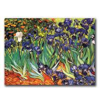 Vincent van Gogh 'Irises at Saint-Remy' Canvas Art - Multi