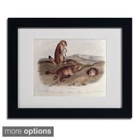 John James Audubon 'Prairie Dog' Framed Matted Art