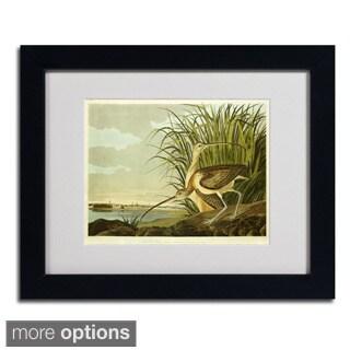 John James Audubon 'Long Billed Curlew' Framed Matted Art