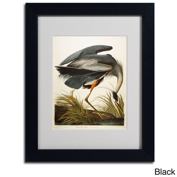 Shop John James Audubon Great Blue Heron Framed Matted