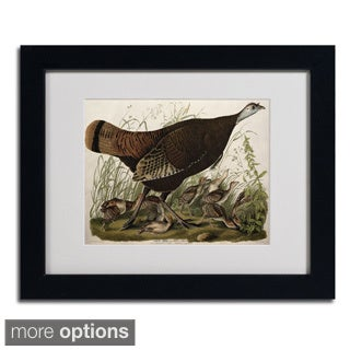 John James Audubon 'Great American Hen and Young' Framed Matted Art