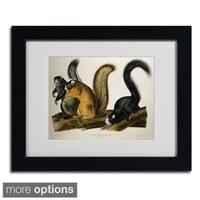 John James Audubon 'Fox Squirrel' Framed Matted Art