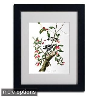 John James Audubon 'Downy Woodpecker' Framed Matted Art
