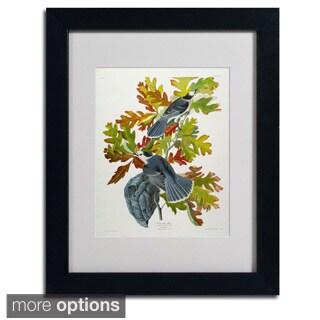 John James Audubon 'Canada Jay' Framed Matted Art