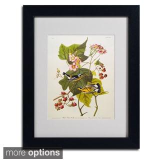 John James Audubon 'Black and Yellow Warbler' Framed Matted Art