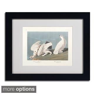 John James Audubon 'American Ptarmigan' Framed Matted Art