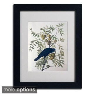 John James Audubon 'American Crow' Framed Matted Art