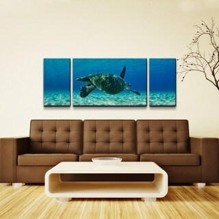 Chris Doherty 'Maui Turtle Drifter' 3-piece Oversized Canvas Wall Art